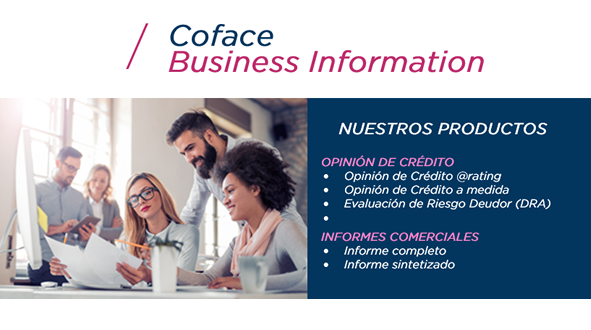 business information - web